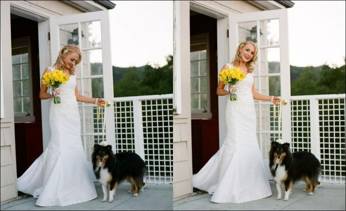 bride in beautiful white wedding dress, yellow bouquet, with dog
