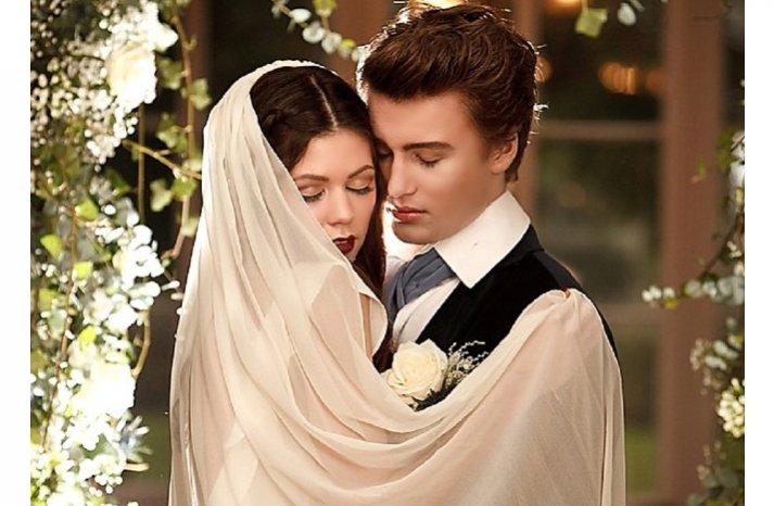 breaking dawn bridal veil sleeved wedding dress romantic wedding ceremony arch