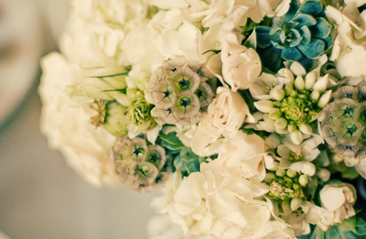 eco friendly spring bridal bouquet white blue wedding flowers