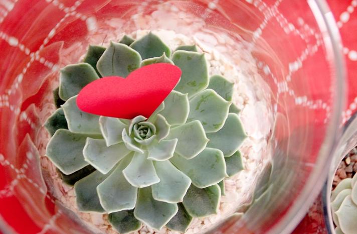 DIY wedding flower centerpieces succulents eco friendly