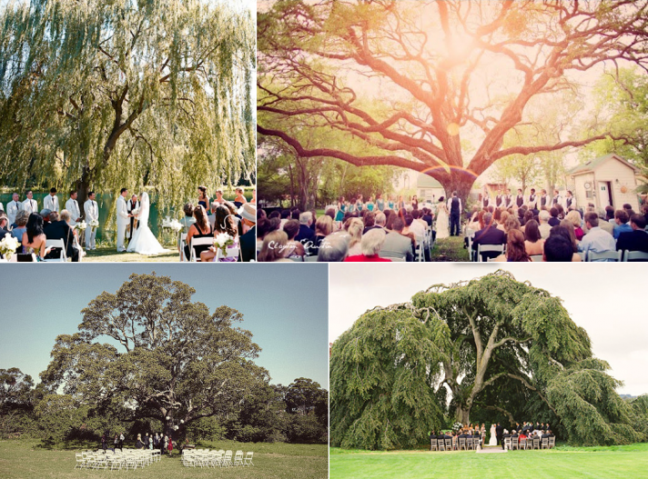 wedding under tree from Jonas Peterson via 100 layer cake