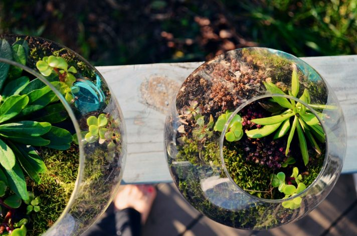eco chic wedding ideas mossy wedding centerpieces terrariums 1