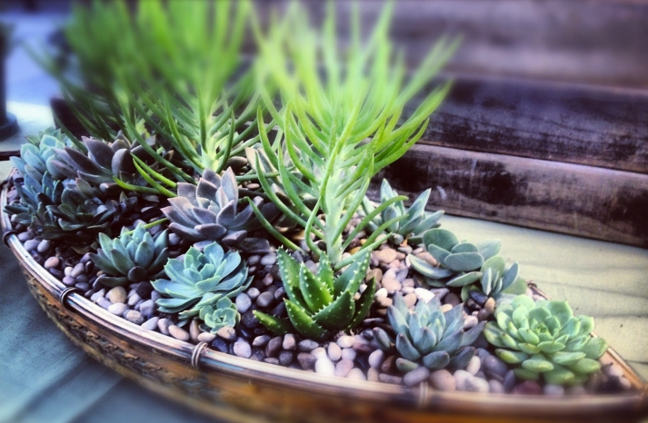 simple wedding centerpieces for a handcrafted wedding succulent sailboat