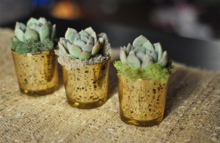 rustic moss wedding ceremony reception decor eco friendly simple succulent centerpieces
