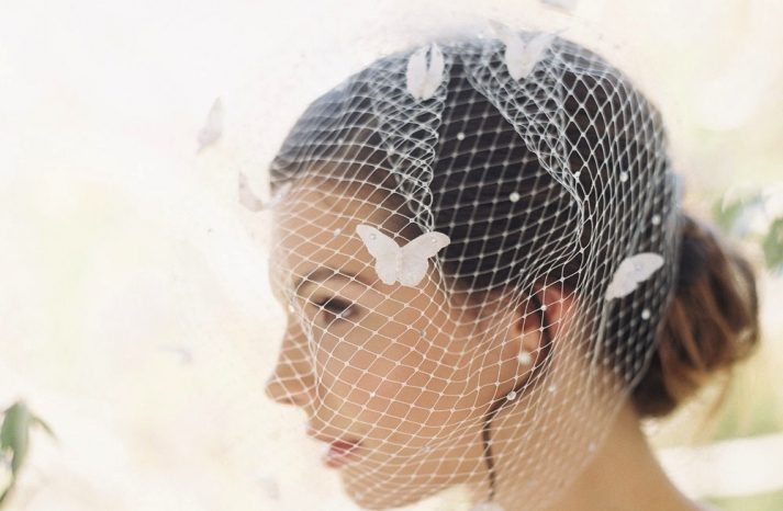 french net birdcage blusher veil with butterfly accents