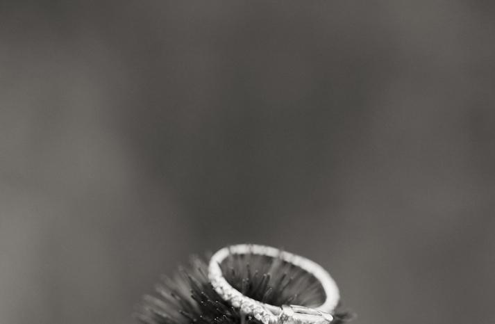 Rings in nature